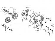 N°3 - Arbre de transmission primaire