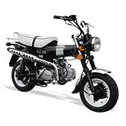 Pièces détachées d'origine Dax SKYTEAM 50/125cc