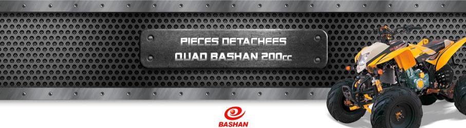 Pièces Détachées Quad BASHAN 200 - FEROS