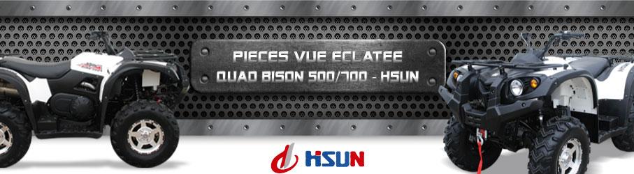 Vue Eclatée Quad Bison 500/700 HSUN - Pièces Détachées Quad Bison 500/700 HSUN